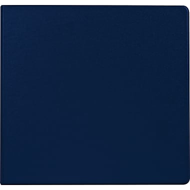 Staples Standard 4-Inch D 3-Ring Binder, Blue (26320)