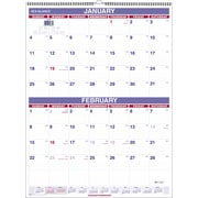"2016 AT-A-GLANCE® Two-Month Wall Calendar, 22'' x 29"", White/Blue, (PM9-28)"