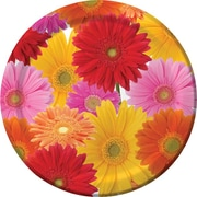 "Creative Converting Gerbera Bouquet 7"" Round Luncheon Plates, 8/Pack"