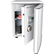 Fortress® Security R210E Refrigerator Diversion Safe