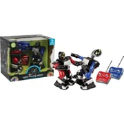Black Series Head 2 Head RC Boxing Robots Remote Control Cordless