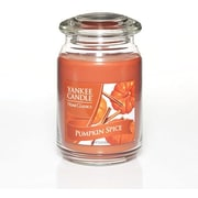 Yankee Candle® Pumpkin Spice Candle, Large Jar