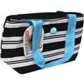 Igloo Insulated Lunch Tote, Stripe