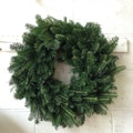Fresh-Cut Christmas Fraser Fir Wreath 22'', Delivery Week of December 15th