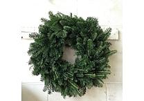 Fresh-Cut Fraser Fir Wreath 22'', Various Delivery Dates
