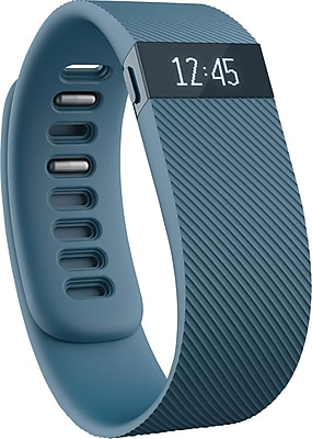Fitbit Charge Wireless Activity Wristband Large Slate FB404SLLS