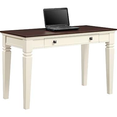 Raine puter Desk