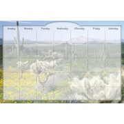 Biggies, 3' x 2', Film Dry-Erase Stickie Monthly Calendar, Desert Cactus (DC-DTC-36)