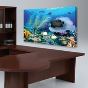 "Biggies- Canvas Board-Ocean Reef 38"" x 22"