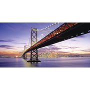 "Biggies- Wall Mural -San Francisco Bridge 54"" x 27"""