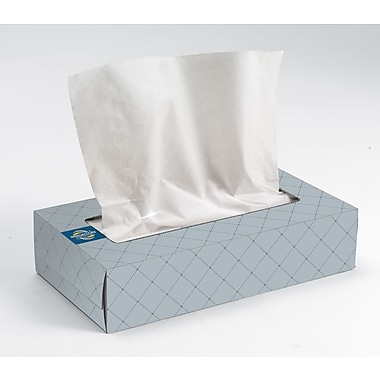 Brighton Professional 2-Ply Flat Box Tissues, 6/Pack (33603)