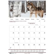 "2016 House of Doolittle Earthscapes Wildlife Wall Calendar, 15.5"" x 22"" (HOD373-16)"