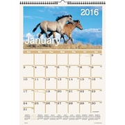 "2016 AT-A-GLANCE® Horses Monthly Wall Calendar, January-December, Design, (DMW401-28), 12"" x 17"""