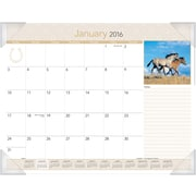 "2016 AT-A-GLANCE® Horses Monthly Desk Pad Calendar, Design, (DMD168-32), 22"" x 17"""