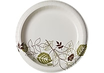 Dixie Pathways™ 10' Heavyweight Paper Plates, 125/Pack