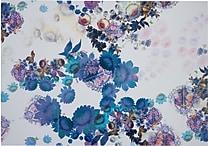 Cynthia Rowley Wallpaper, Cosmic White Floral