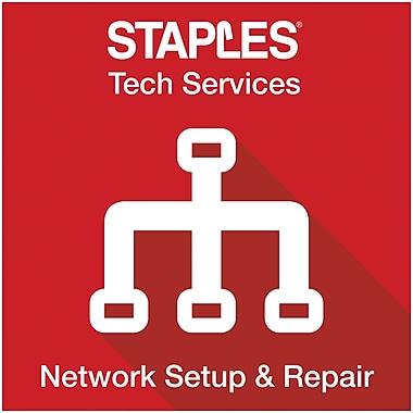 Network Setup and Repair (Onsite)
