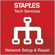 Network Setup & Repair (Online Delivery)