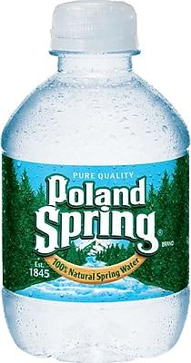 Poland Spring 100  Natural Spring
