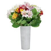 The Bouqs Company Fresh Flower Delivery, 20 or 10 Alstroemeria w/ Vase