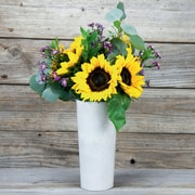 Vibrance with Vase