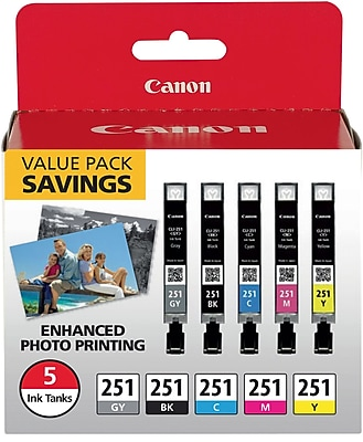 Canon CLI-251 Black & C/M/Y/GY Color Ink Cartridges (6513B011), Combo 5/Pack 1979191