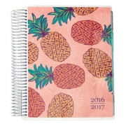2016-2017 Erin Condren 18 Month Horizontal LifePlanner™, Pineapple Punch (2106854)