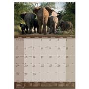 "2017 Brownline® 12"" x 17"" Monthly Wall Calendar, Wildlife Theme(C173108)"