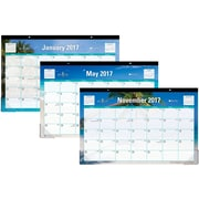 2017 Blue Sky 17x11 Monthly Desk Pad Calendar, Endless Summer (19715)