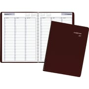 "DayMinder® Weekly Appointment Book, 2017, 8"" x 11"" (G520-14-17)"