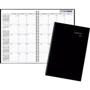 "DayMinder® Monthly Planner, 2017, 7 7/8"" x 11 7/8"" (SK2-00-17)"