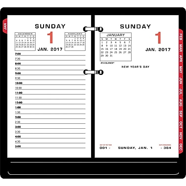 At A Glance 174 Daily Loose Leaf Desk Calendar Refill 2017