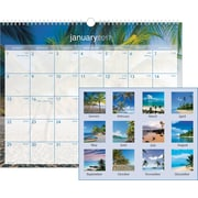 "AT-A-GLANCE® Wall Calendar, 2017, 15"" x 12"", Tropical Escape (DMWTE8 28 17)"