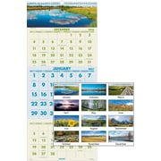 "AT A GLANCE® Recycled Scenic 3 Month Wall Calendar, 2017, 12"" x 27"" (DMW503 28 17)"