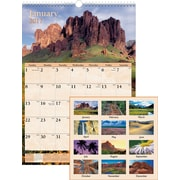 "AT-A-GLANCE® Wall Calendar, 2017, 12"" x 17"", Scenic (DMW200 28 17)"