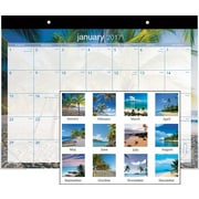 "AT-A-GLANCE® Desk Pad, 2017, 22"" x 17"", Tropical Escape (DMDTE2 32 17)"