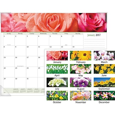 At A Glance 174 Panoramic Monthly Desk Pad 2017 22 Quot X 17