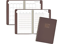 AT-A-GLANCE® Weekly/Monthly Appointment Book/Planner, 2017, 5 1/2' x 8 1/2', WorkStyle Take Charge (WS501 200 17)