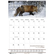 "House of Doolittle, Wall Calendar, 2017, 22"" x 15 1/2"", Earthscapes Wildlife (373-17)"