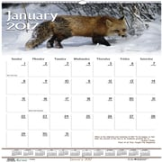 "House of Doolittle, Wall Calendar, 2017, 12"" x 12"", Earthscapes Wildlife (3731-17)"