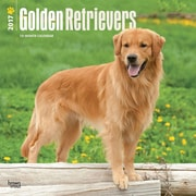 2017 Golden Retrievers Square 12x12