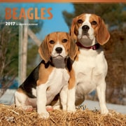 2017 Beagles Square 12x12