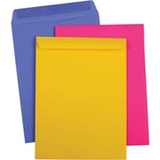 9x12 Catalog Envelope, Bright 1 Assorted
