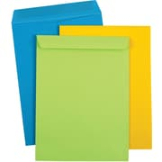 9x12 Catalog Envelope, Bright 2 Assorted