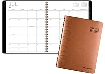 2017-2018 AT-A-GLANCE® 8 7/8' x 11' Contemporary Academic Monthly Planner,12 Months, Copper (70-074X-70-18)