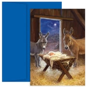 JAM Paper® Christmas Card Set, Jesus in Manger Holiday Cards, 18/pack