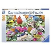 Ravensburger Usa Inc 19.5 In. X 14.25 In. Garden Birds Puzzle 500 Piece (Jnsn72552)