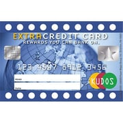 EUREKA EXTRA CREDIT CARD REWARD PUNCH CARDS (LEARN0335)