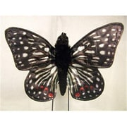 Sunny Toys 14 In. Butterfly - Checkerspot, Animal Puppet (SNTY409)