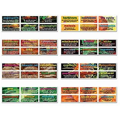 Carson Dellosa 48 Life Science Testing Words Mini Bulletin Board Set Set (EDRE39798) 2517022